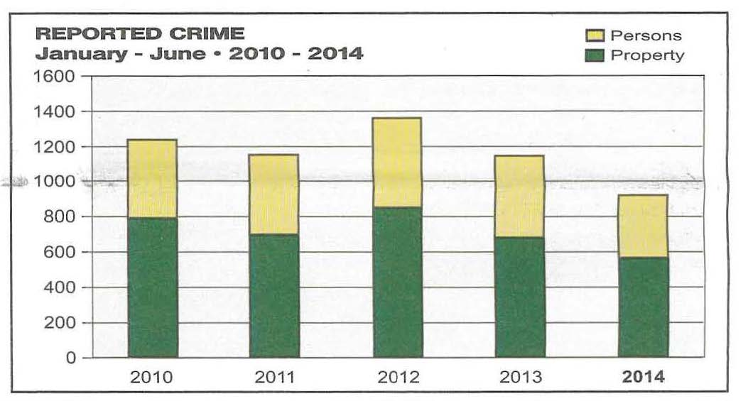 Crime Chart 1st 6 mos_Page_3.jpg
